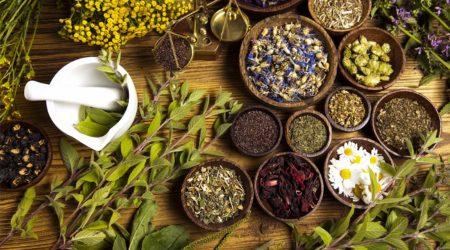 Заварка чая из полевых и огородных трав